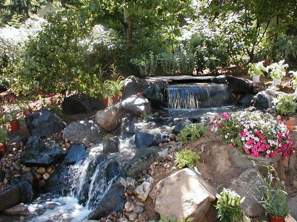 Falling Water Designs Features Ponds Fountains Waterfalls Seattle Washington